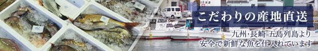 こだわりの産地直送 九州・長崎五島列島より安全で新鮮な魚を仕入れています